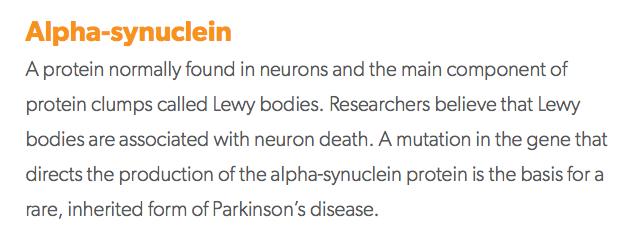 Alpha-synuclein Parkinson's glossary