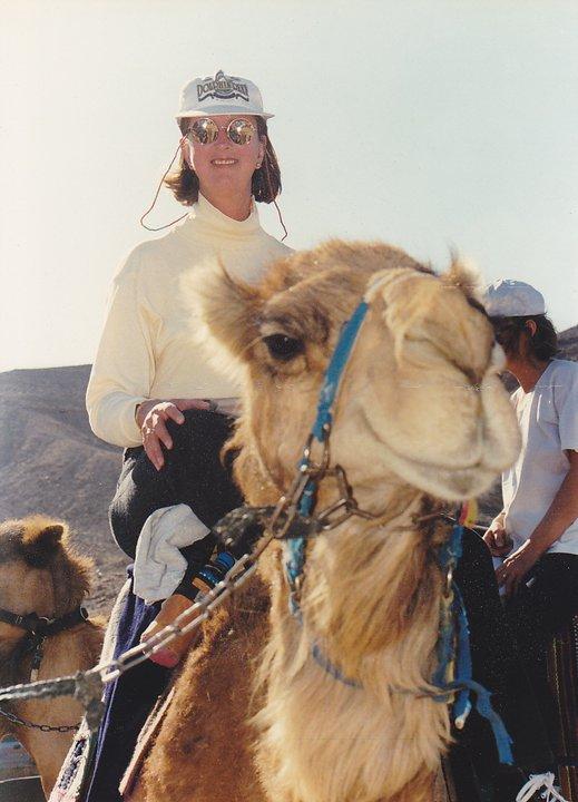 jc_camel_2001