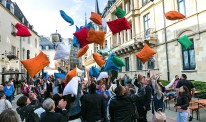 Luxembourg pillow fight for Parkinson's lead