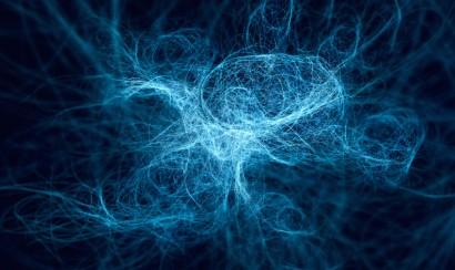 Portland Podcast neurons