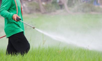 Portland Podcast pesticides