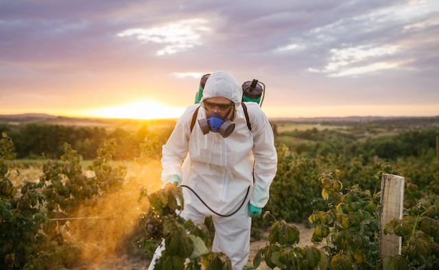 Pesticides could be linked to Parkinson's
