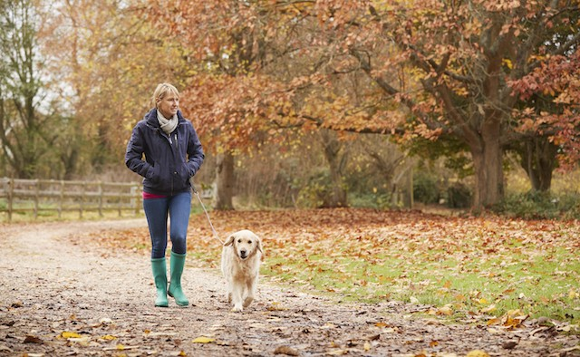 Parkinson's research singing improves gait