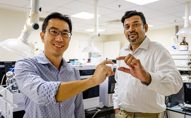 NTU Assoc Prof Joachim Loo and LiberaTx COO Shashi Kesavapany holding their new drug microcapules in their hands