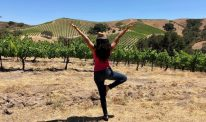 A rear view of Dr Indu Subramanian doing a yoga pose in a sunny field