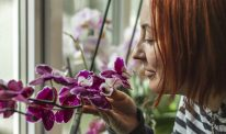 A woman smells a purple orchid.