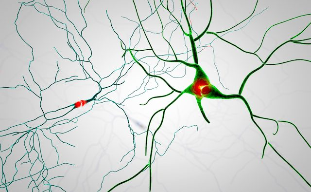 An abstract image of brain neuron pathways.